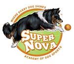 Supernova Dog Sports Academy Logo