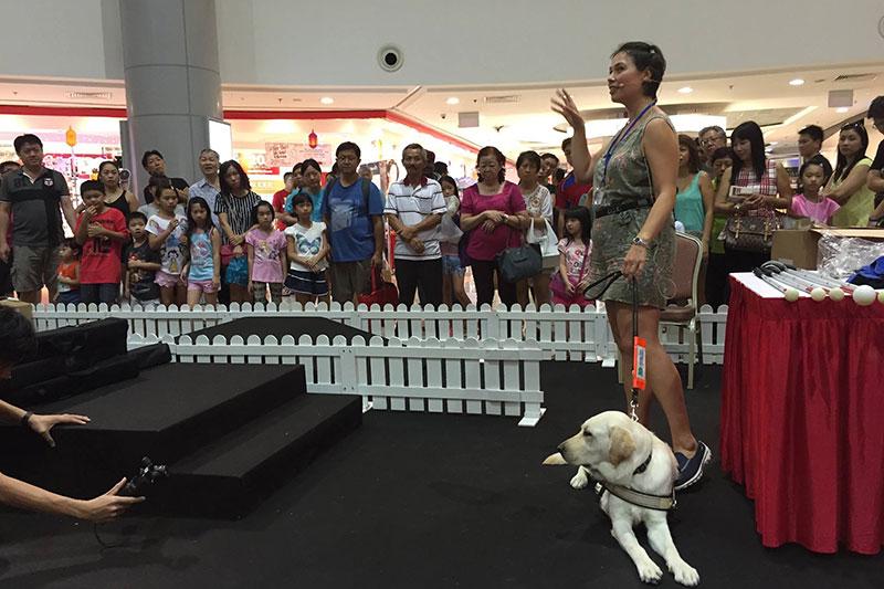 GDMI Zara and guide dog Ria conducting a demonstration