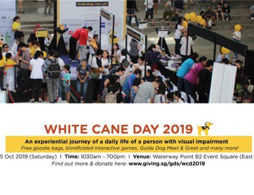 White Cane Day 2019