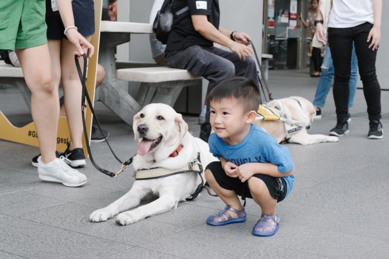 International Guide Dog Day (IGDD) 2021